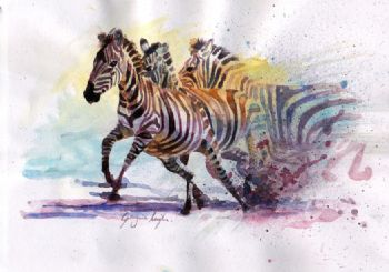 Explorers Against Extinction Zebras